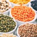 Lentils/Legumes/Rice